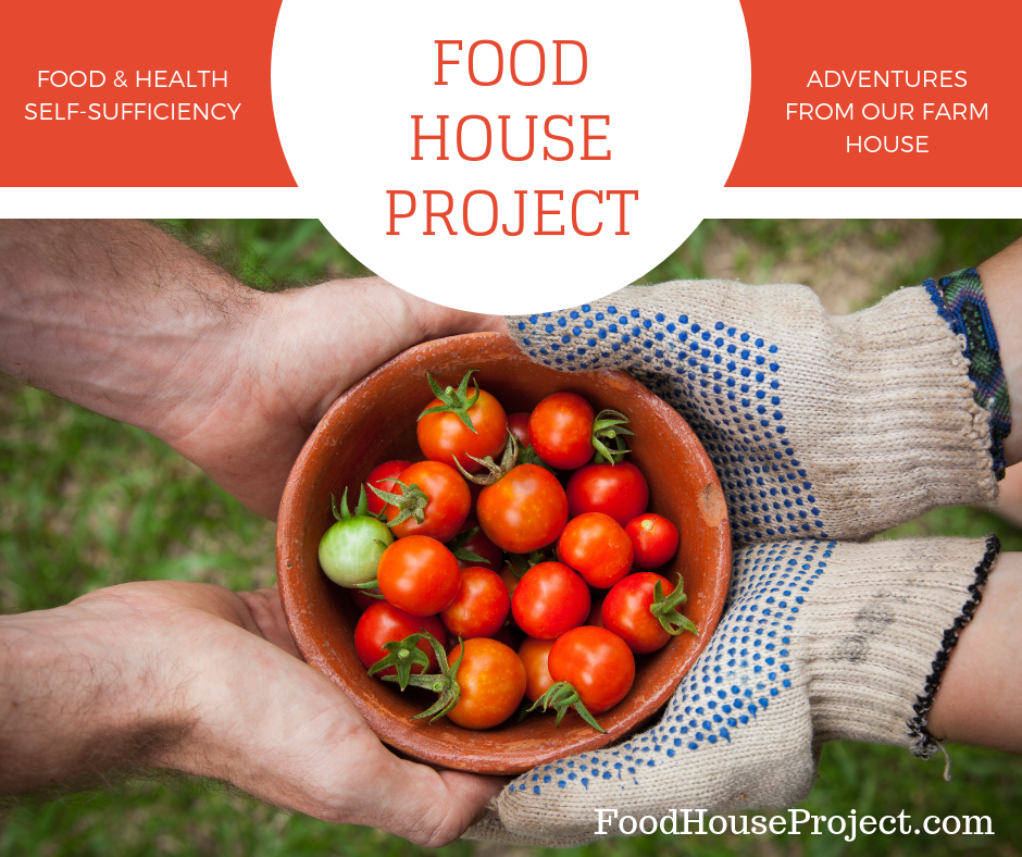 Food House Project Adventures from Our Farmhouse
