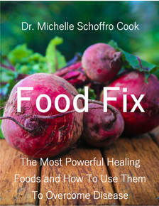 Food Fix Ebook by Dr. Cook